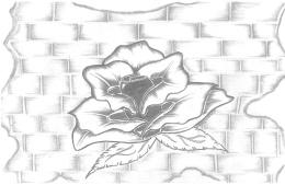 concrete rose drawing